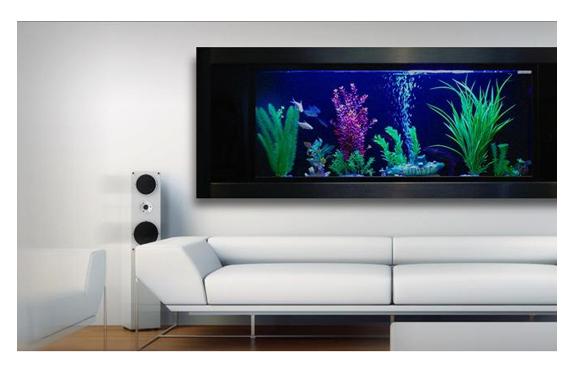 Ideias fant sticas de decora o com aqu rios for Acquario da parete