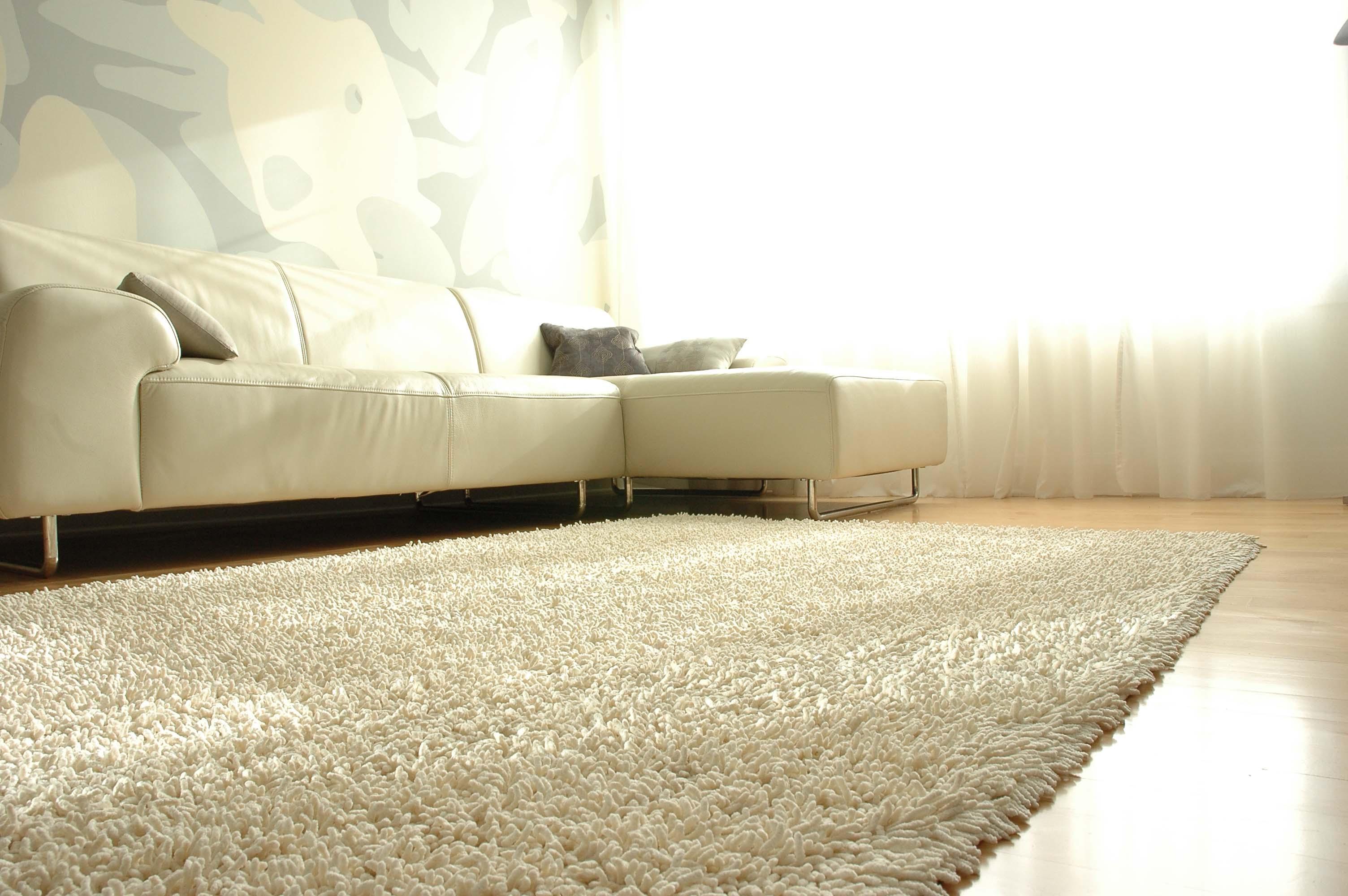 #614927 Combinar os tapetes com o estilo de decoração 3008x2000 píxeis em Como Usar Tapete Na Sala De Estar