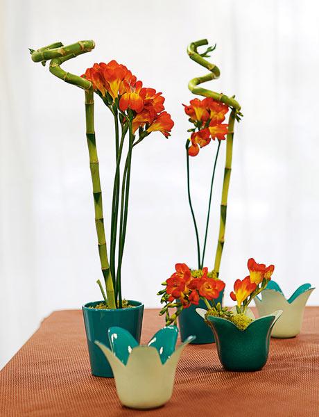 bamb0 3 Decoração com plantas: centros e arranjos com Bambu da sorte