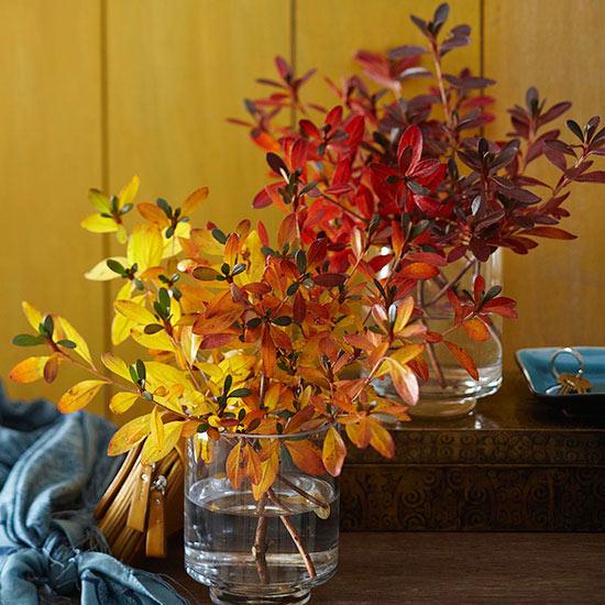 flores-outono